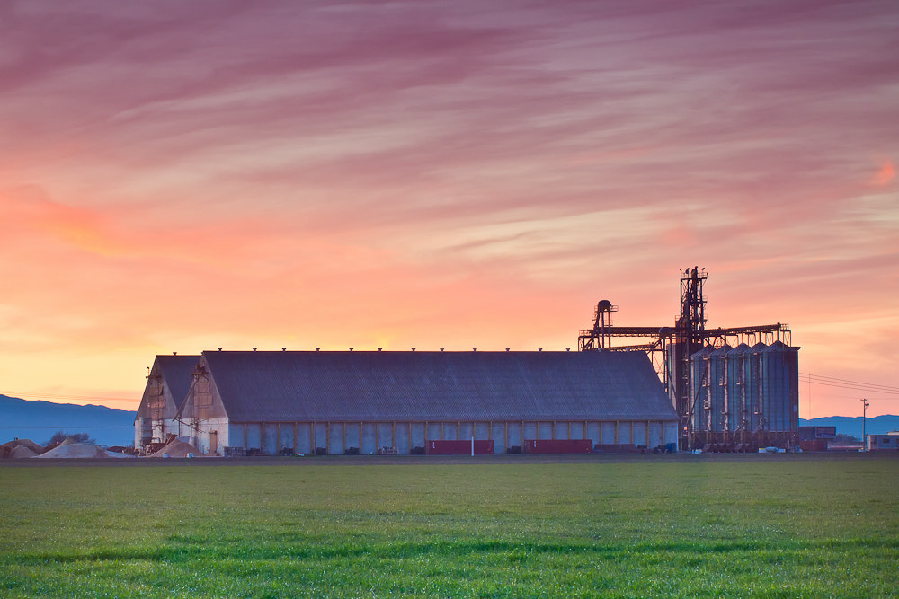 Photograph The off season in rice country by Kevin English on 500px
