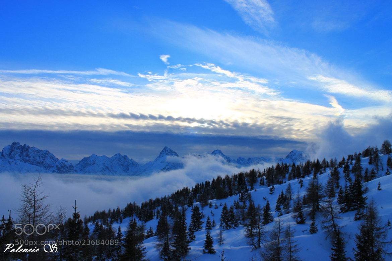 Photograph Il sole dopo la tempesta... di neve.... by Silvia Polencic on 500px