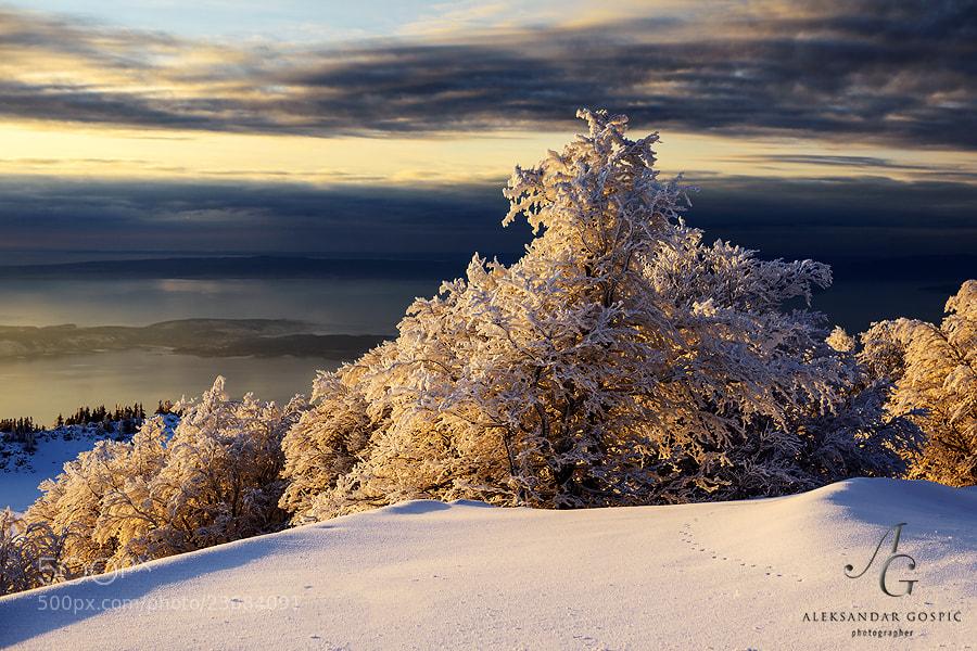 Evening on Velebit mtn