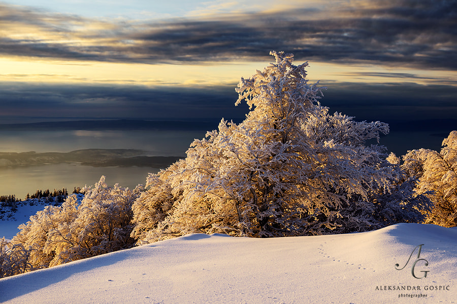 Evening on Velebit mtn