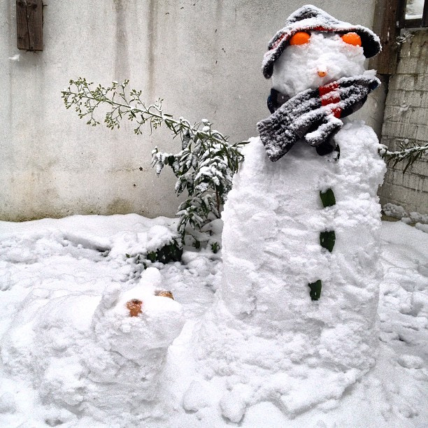 Photograph The snowman and the snow dog was Sundays main project. Keep warm! by Steve Butterworth on 500px