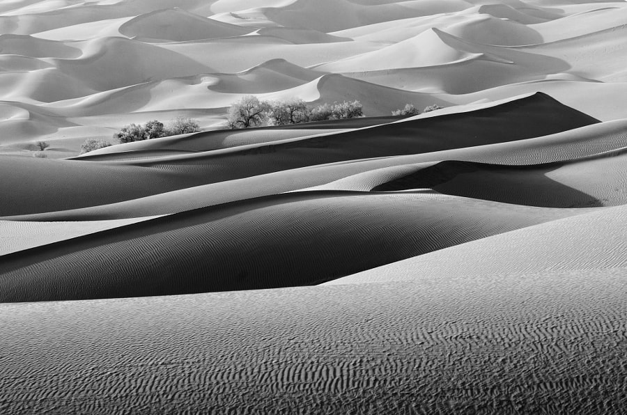 沙海, автор — 冰川 на 500px.com