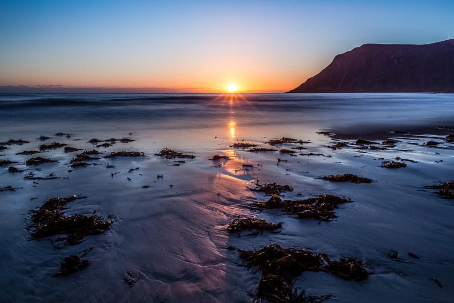 Midnight Sun, Flakstad, Lofoten, Norway, автор — Europe Trotter на 500px.com