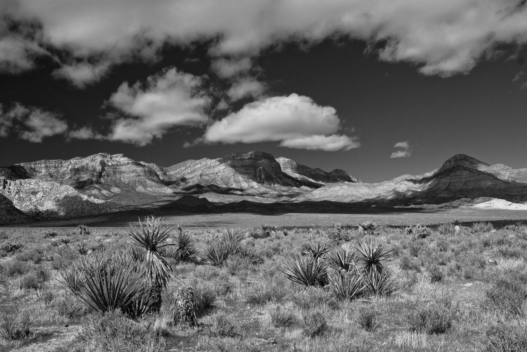 Photograph Western Skies by David Pope on 500px