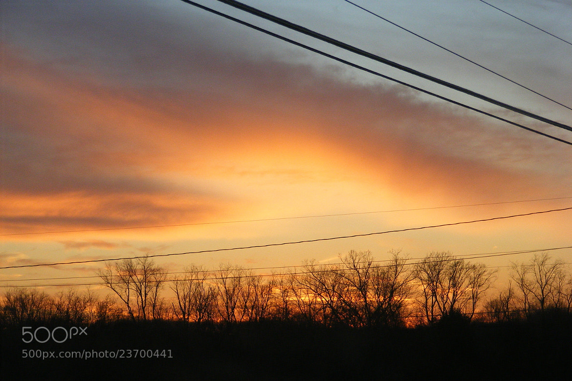 Photograph powerline by Cindy Spahr on 500px