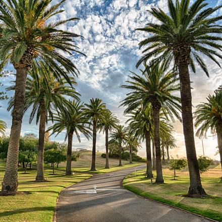 Monument Hill, Fremantle