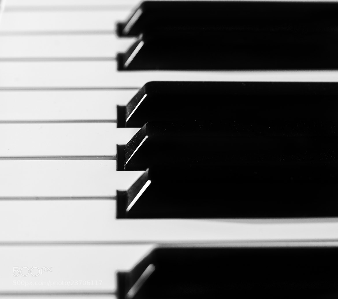 Photograph Tickle The Ivories by Mike Swiech on 500px