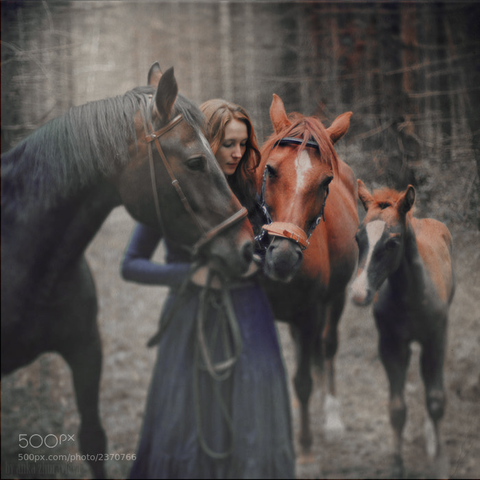 Photograph the four by Anka Zhuravleva on 500px
