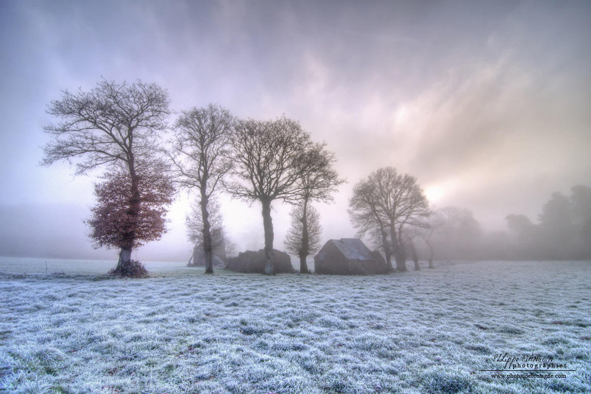 Photograph FROZEN MORNING by Philippe MANGUIN on 500px