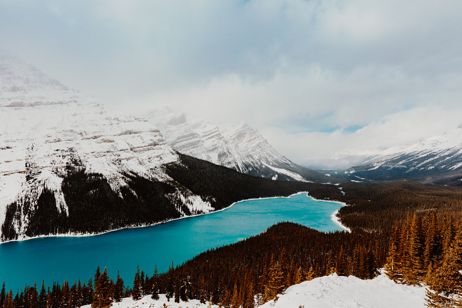 Peyto Lake by Hayden Scott on 500px.com