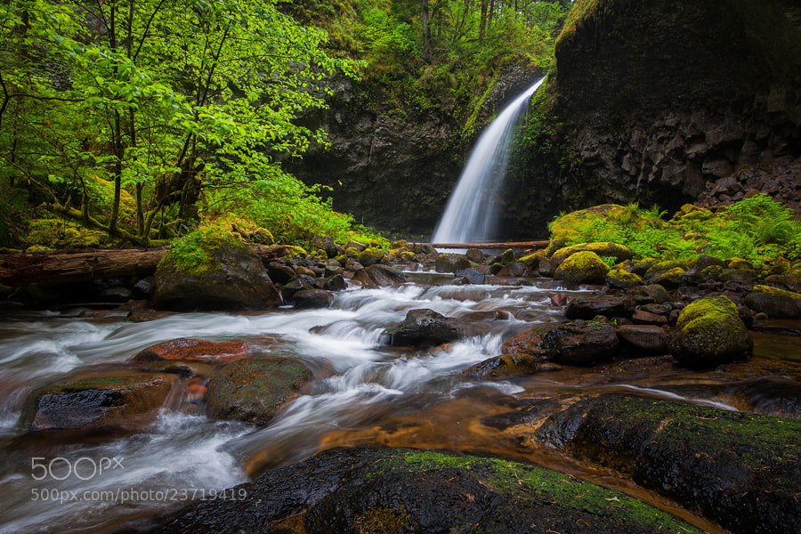 Photograph Upper Oneonta Falls by Alex Mody on 500px