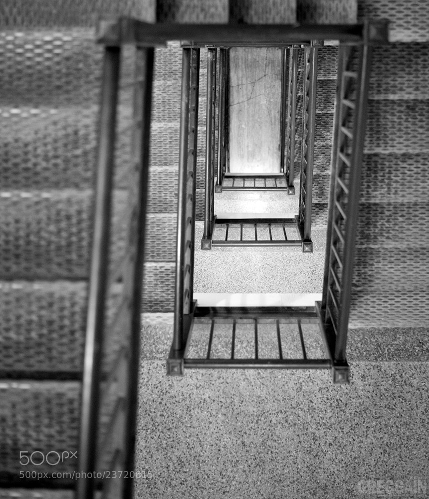 Photograph The Dizzying by Kevin Greggain on 500px