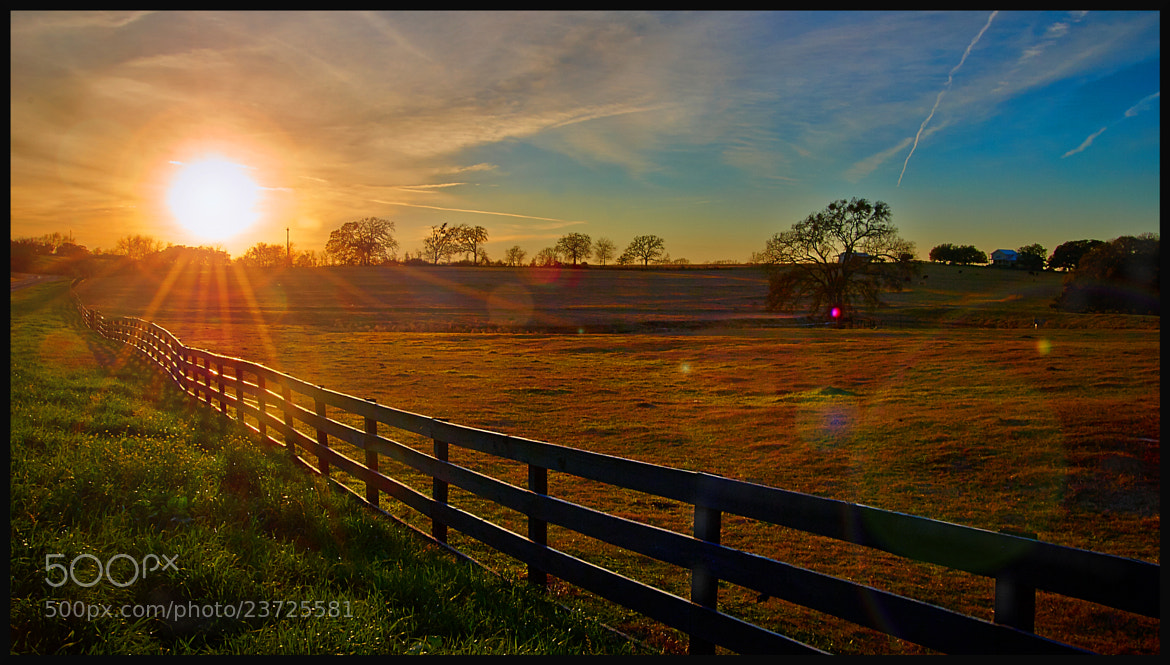Photograph Sunlit Fenceline by Dave Gillenwater on 500px