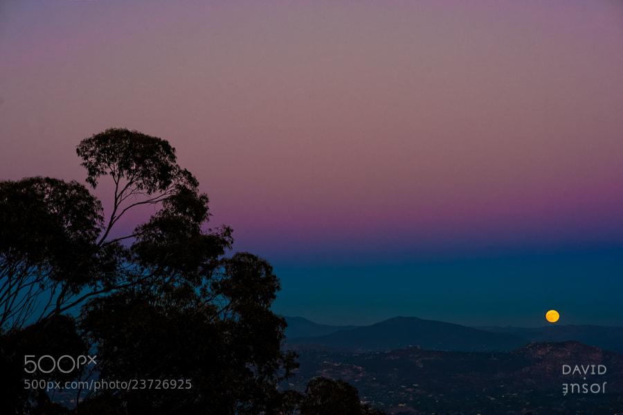 Photograph Moonrise at San Diego by David Josué on 500px