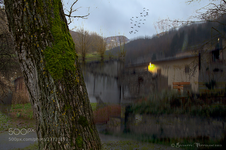 Photograph Artistically by Giuseppe  Peppoloni on 500px