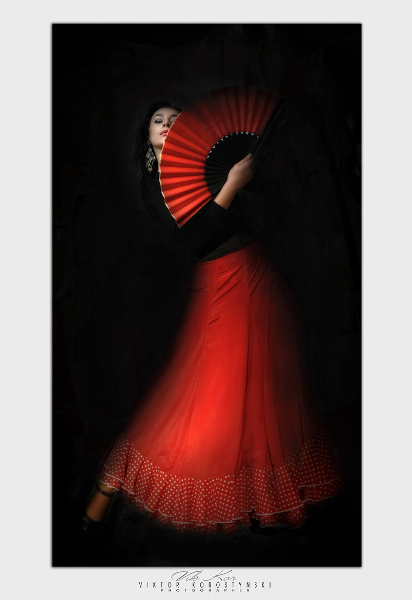 Photograph Flamenco by Viktor Korostynski on 500px