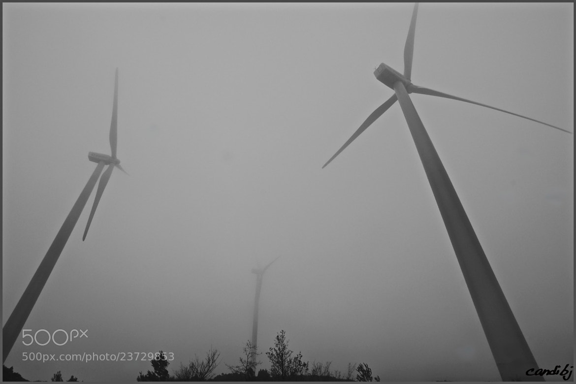 Photograph Molinos en la niebla by Candido Bermudez on 500px