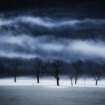 winter's passion