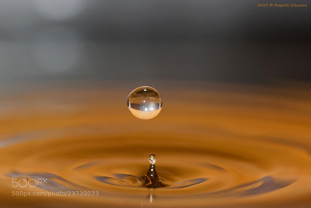 Photograph My drop... by Roberta Silvestro on 500px