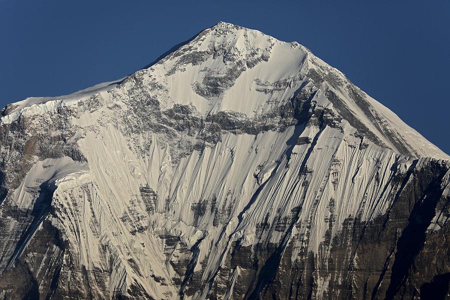 Morning in the Himalayas. Dhaulagiri (8167 meters), автор — Сергей К на 500px.com