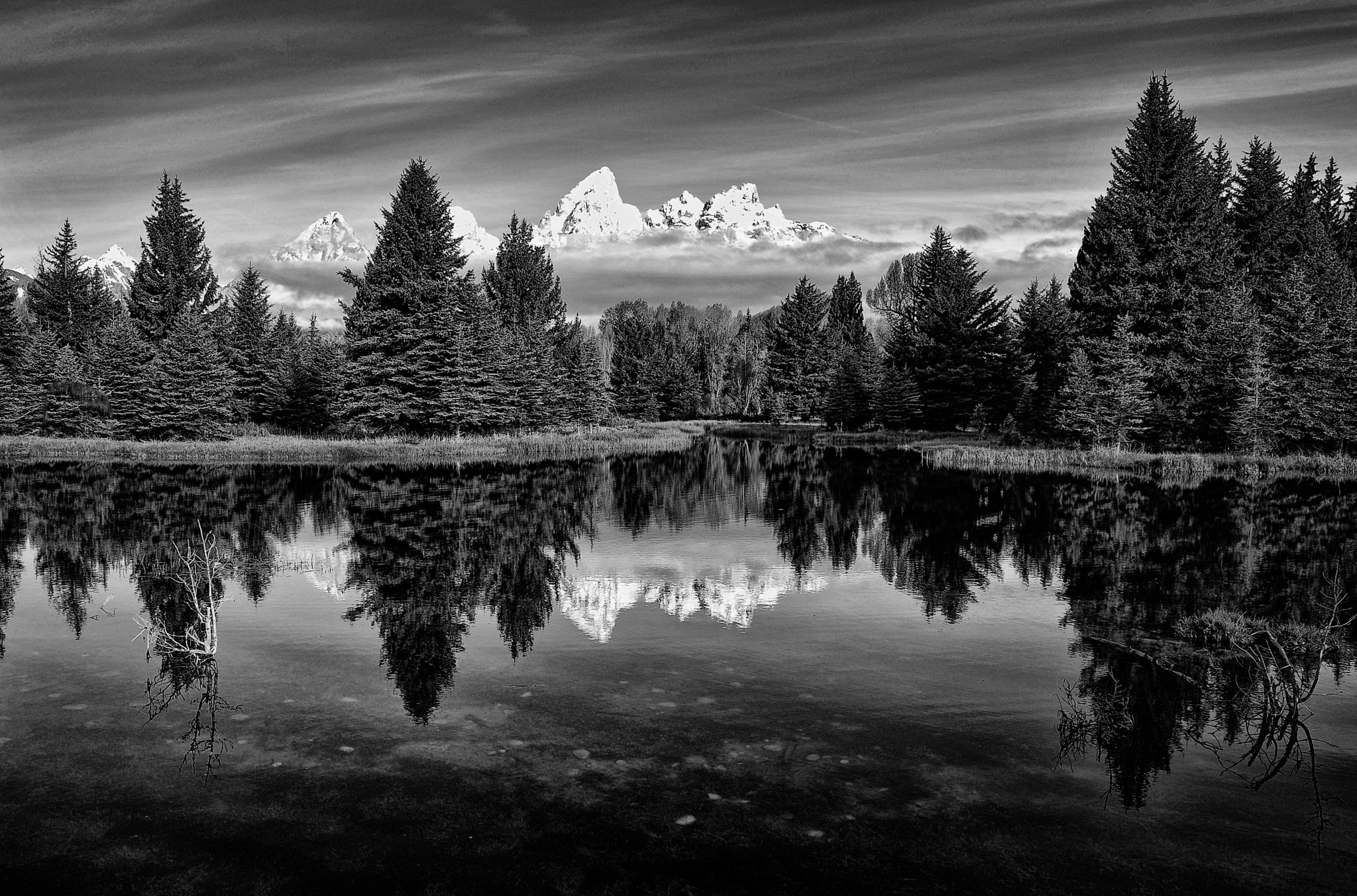 Photograph Timeless Beauty at the Pond by Jeff Clow on 500px
