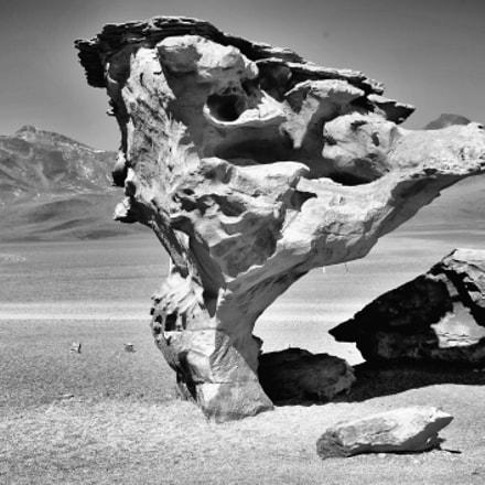 rocher champignon