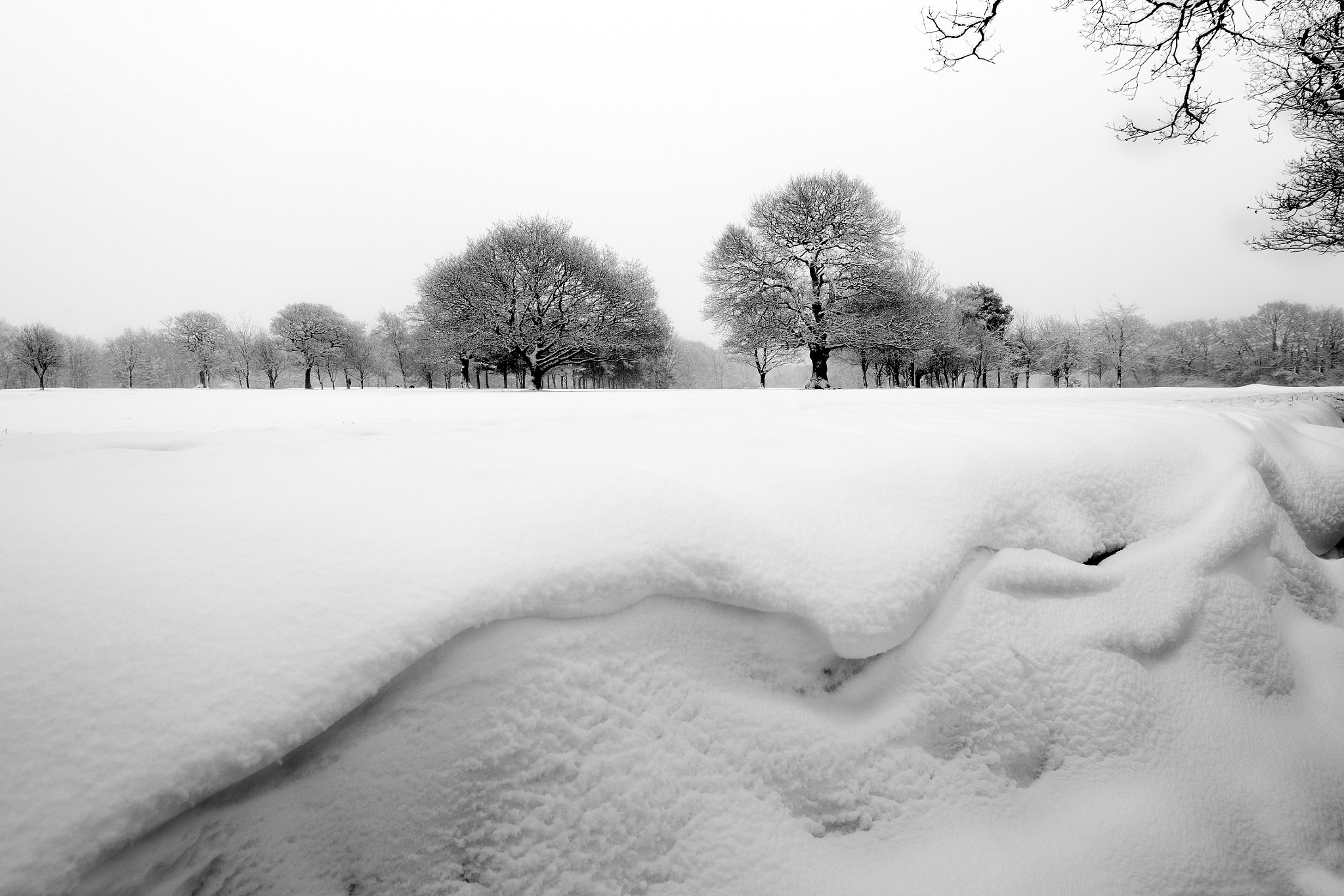 Photograph Snow scape by Mark Tizard on 500px