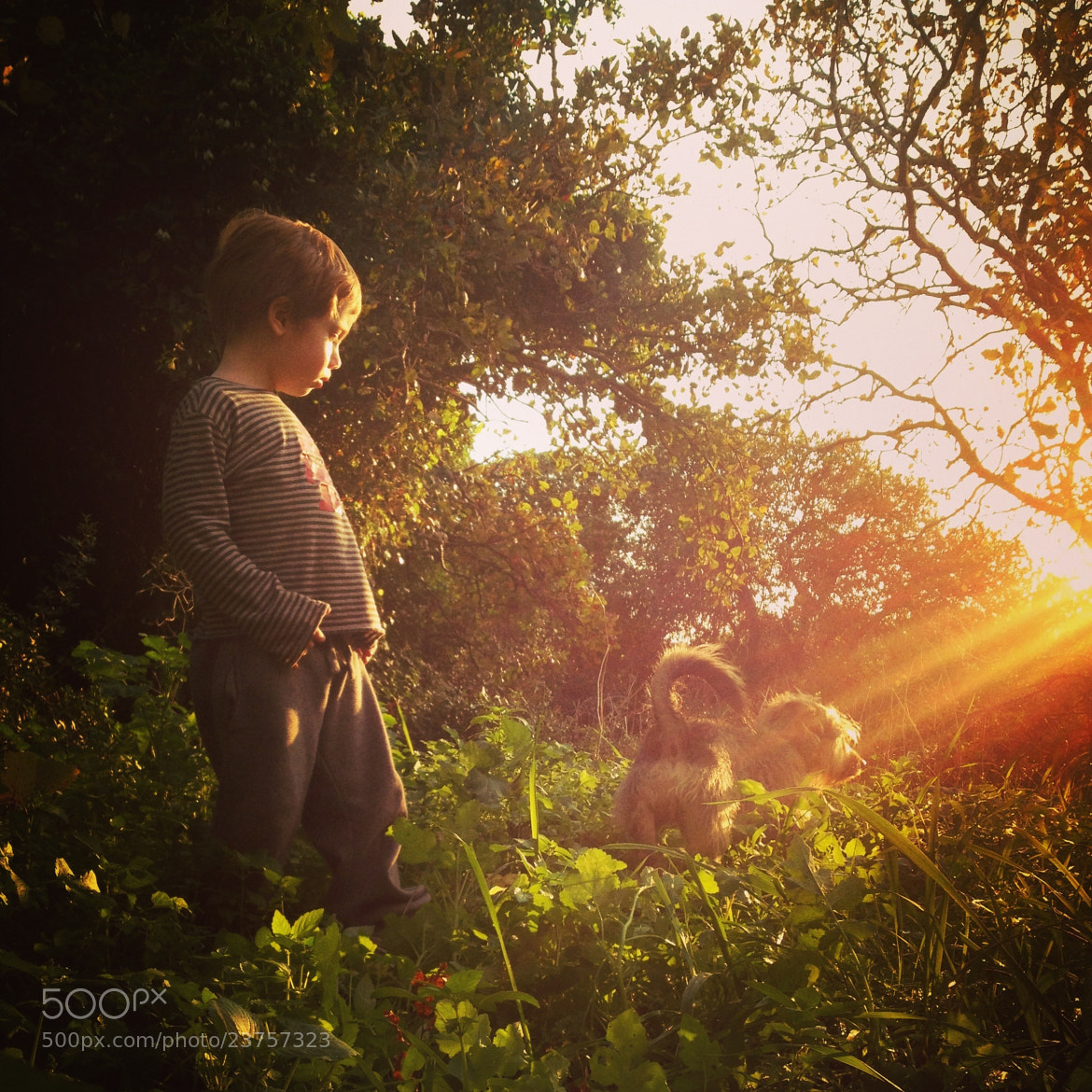 Photograph love story by yaara duvdevan on 500px