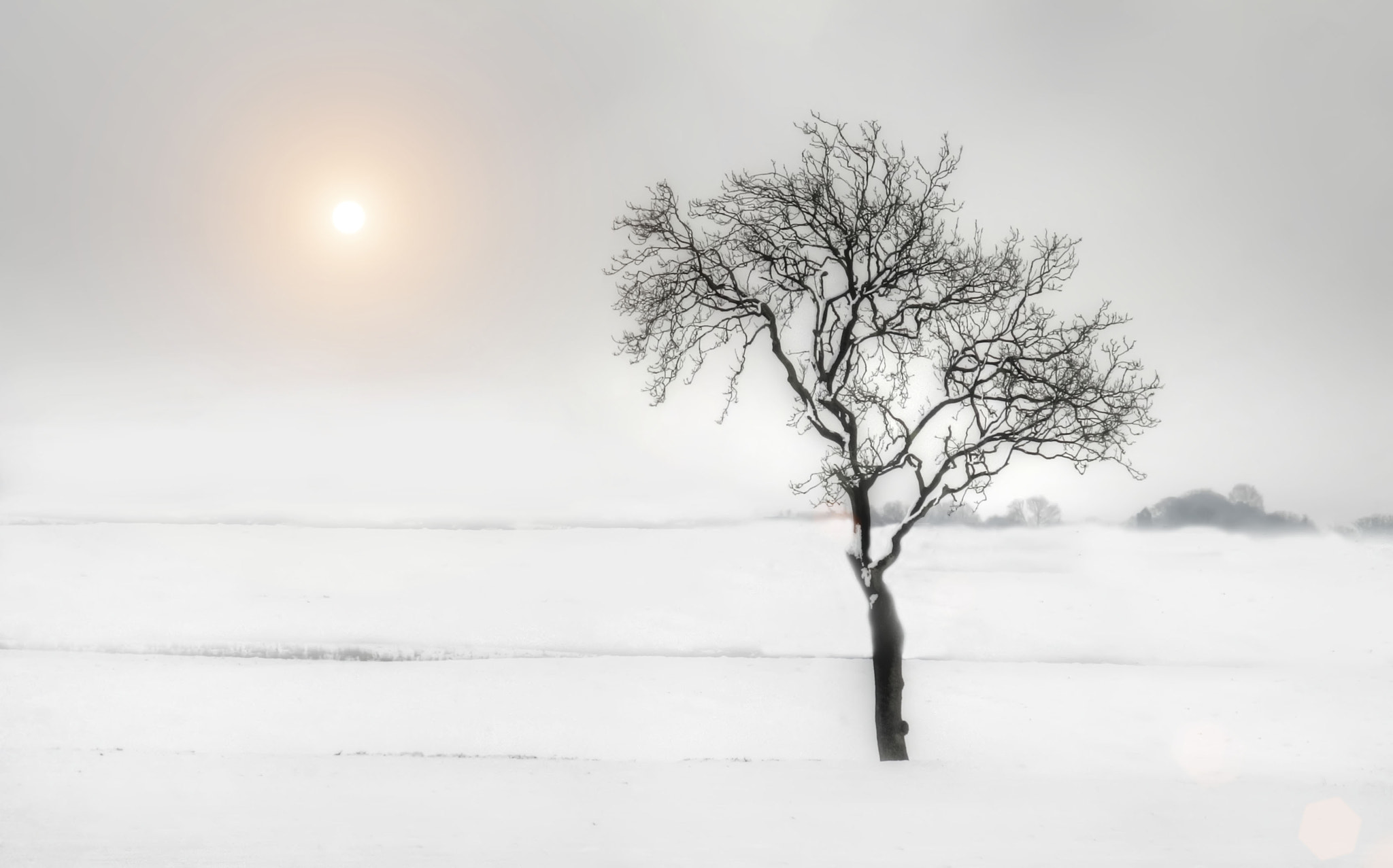 Photograph Snow field by Ron Black on 500px