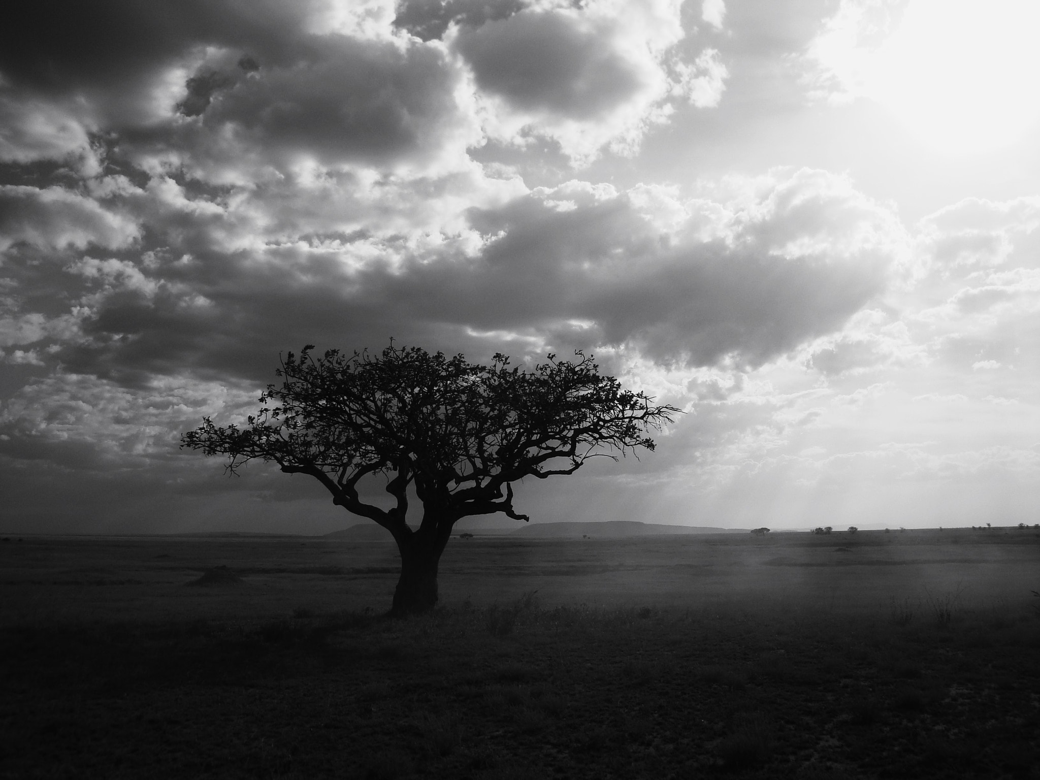 Photograph African B&W by JON TJADER on 500px