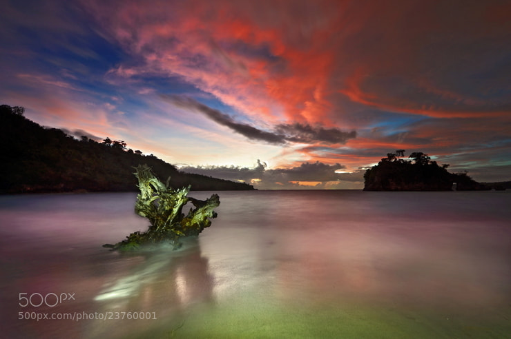 Photograph Untitled by Wisnu Taranninggrat on 500px
