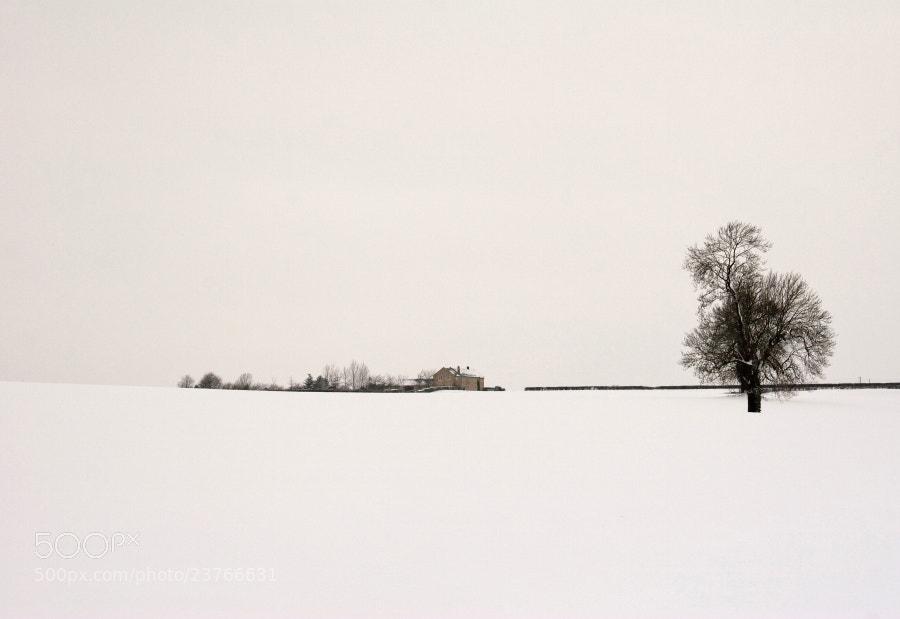 Glebe farm,Blisworth  Northamptonshire,UK