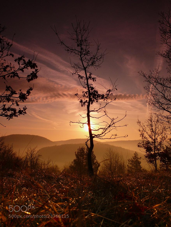 Photograph One morning by Petr Podroužek on 500px