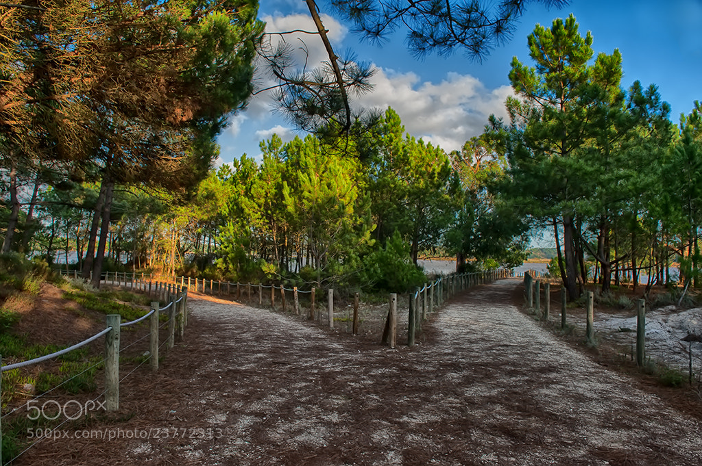 Photograph Where is my way by Jorge Orfão on 500px