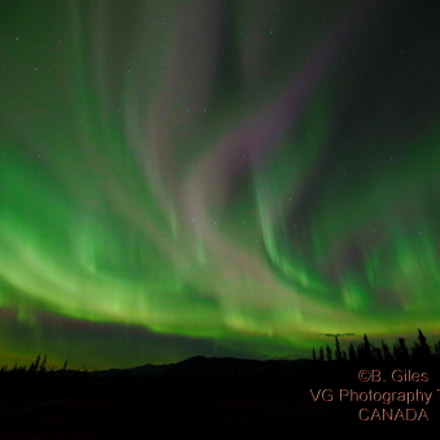 Yukon Light Show