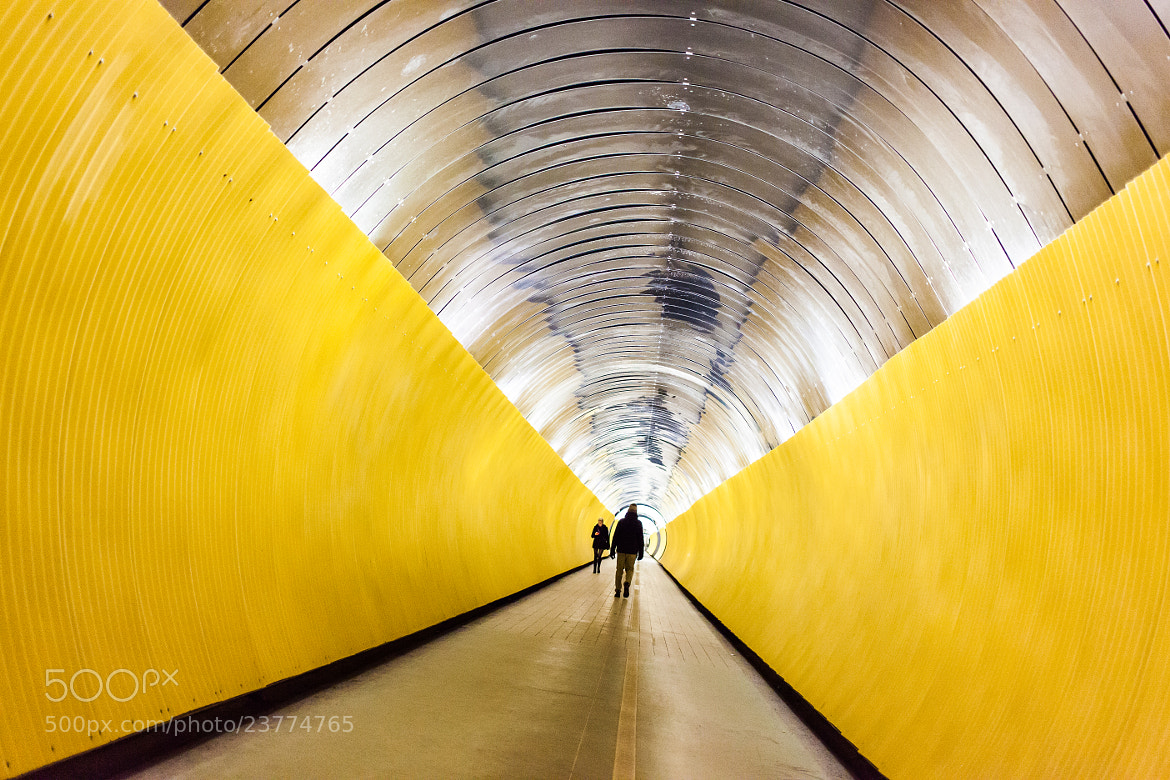 Photograph Yellow tunnel by Håkan Dahlström on 500px