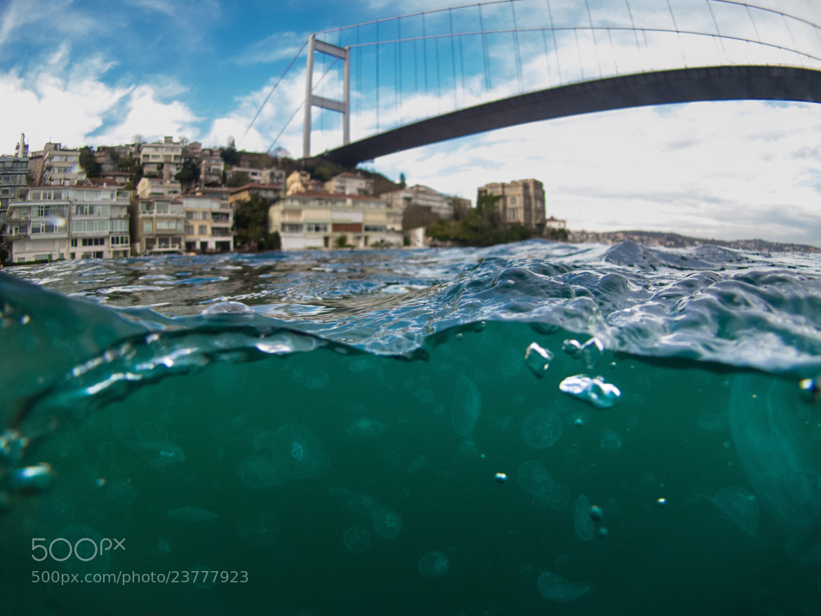 Photograph Jellyfish of the city by Eren Bastanoglu on 500px