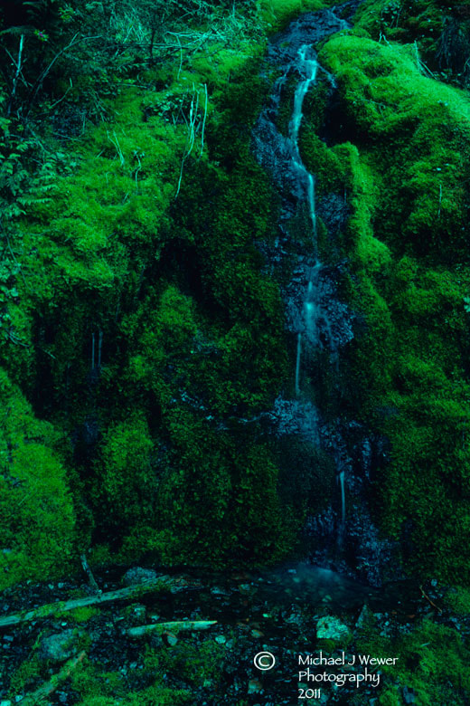 Photograph Cascading Stream & Moss by Michael Wewer on 500px