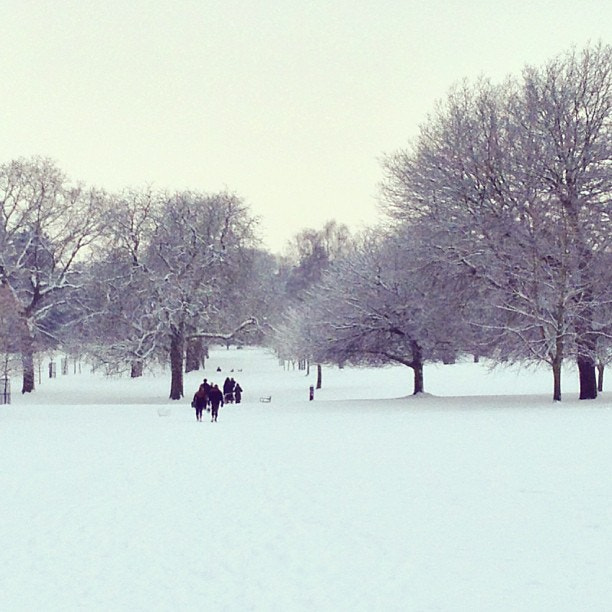 Photograph Christchurch Park for the school run was just beautiful this morning. #uksnow by Steve Butterworth on 500px