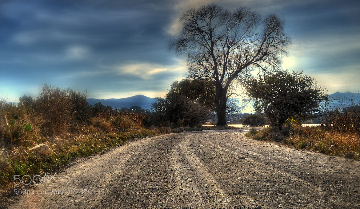 Photograph Dirt-road Trip 1 by Erick Garcia Garcia on 500px
