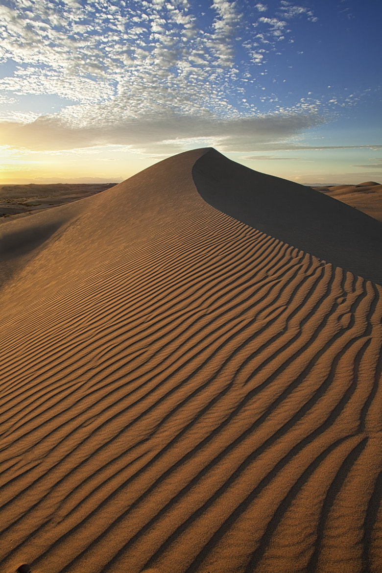Photograph Down South - The Dunes of Southern California by Rich  Bitonti on 500px