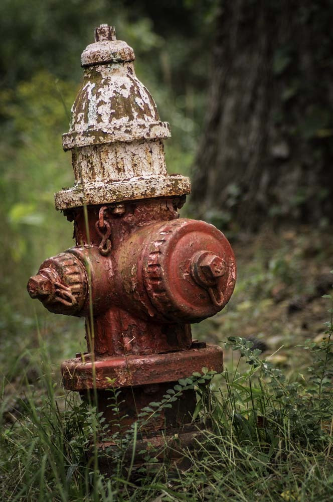 Photograph Rustic Hydrant by Brant Uber on 500px
