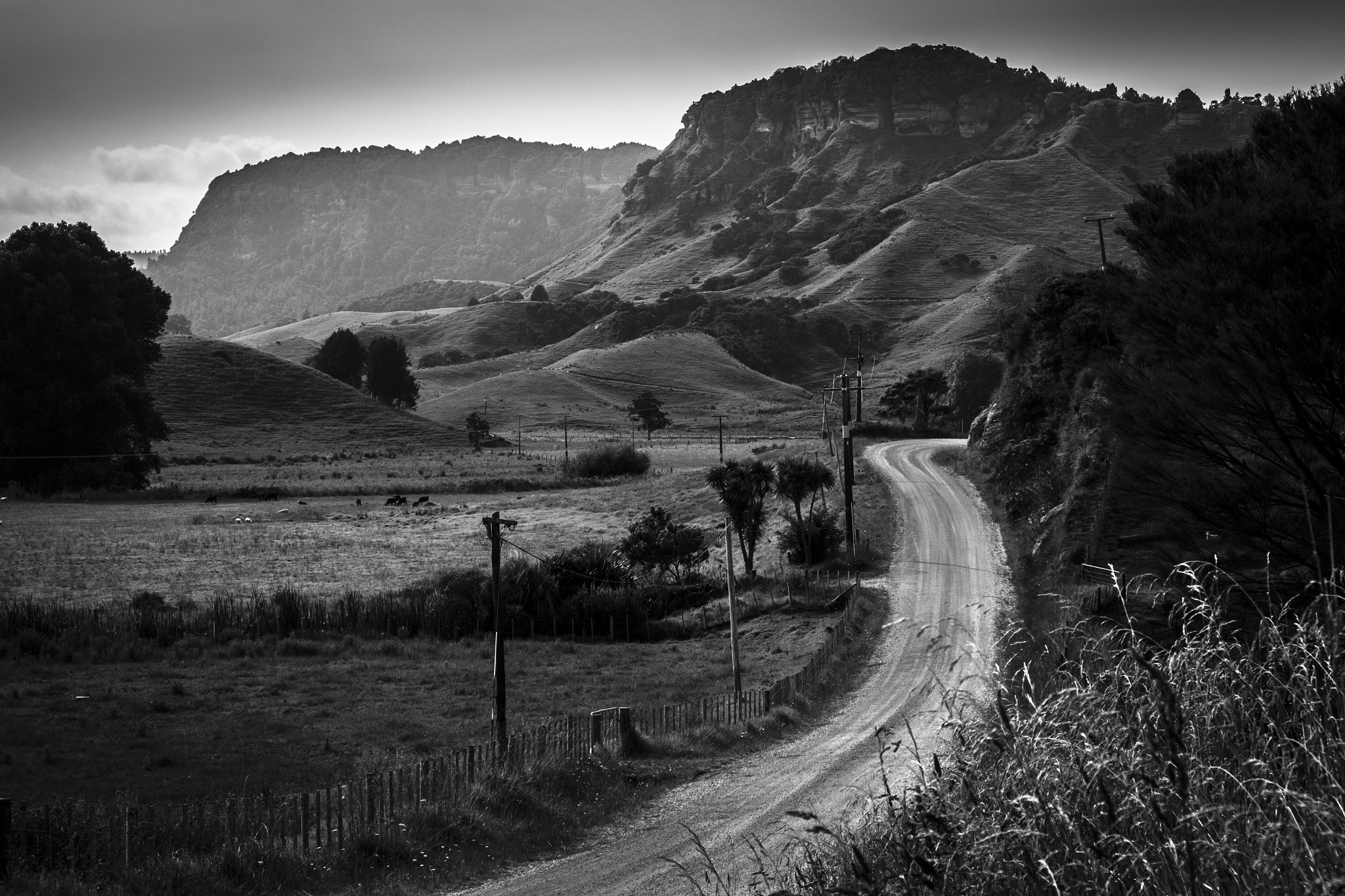 Photograph Karst Country by Craig Robertson on 500px