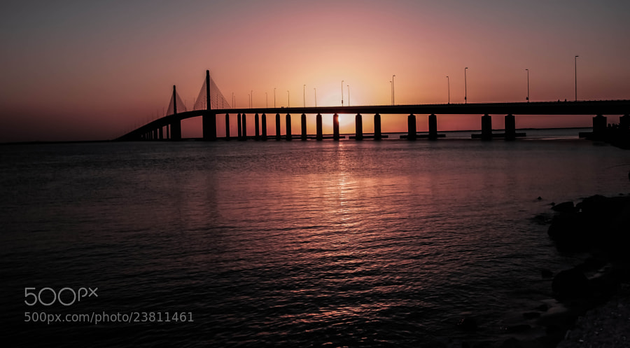 Photograph The Hodariyat Bridge, Abu Dhabi by julian john on 500px