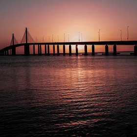 The Hodariyat Bridge, Abu Dhabi by julian john (sandtasticdays)) on 500px.com
