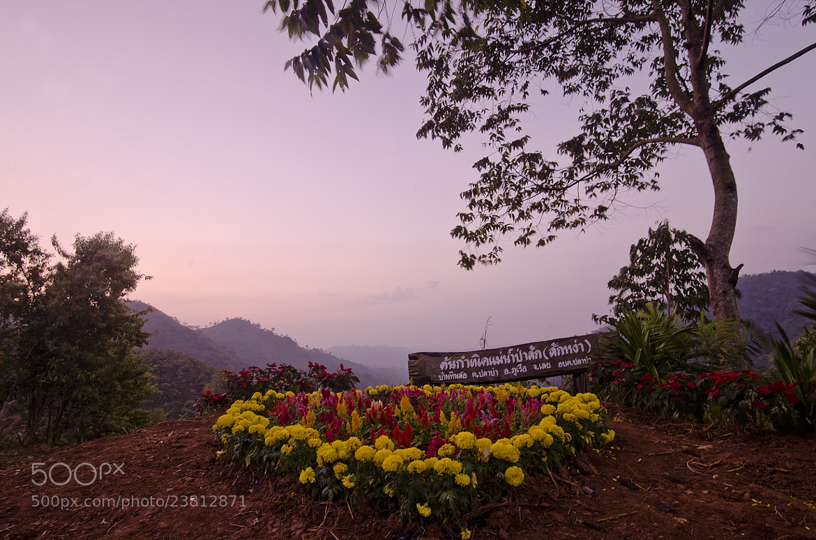 Photograph PHU RUEA in Thailand by Pupa Ausawasin on 500px