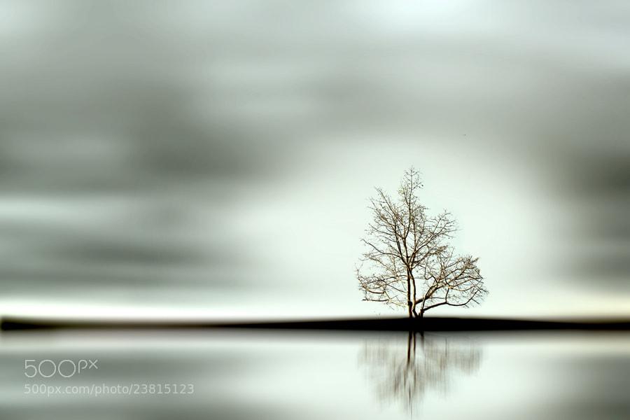 Photograph Silence by 3 Joko on 500px