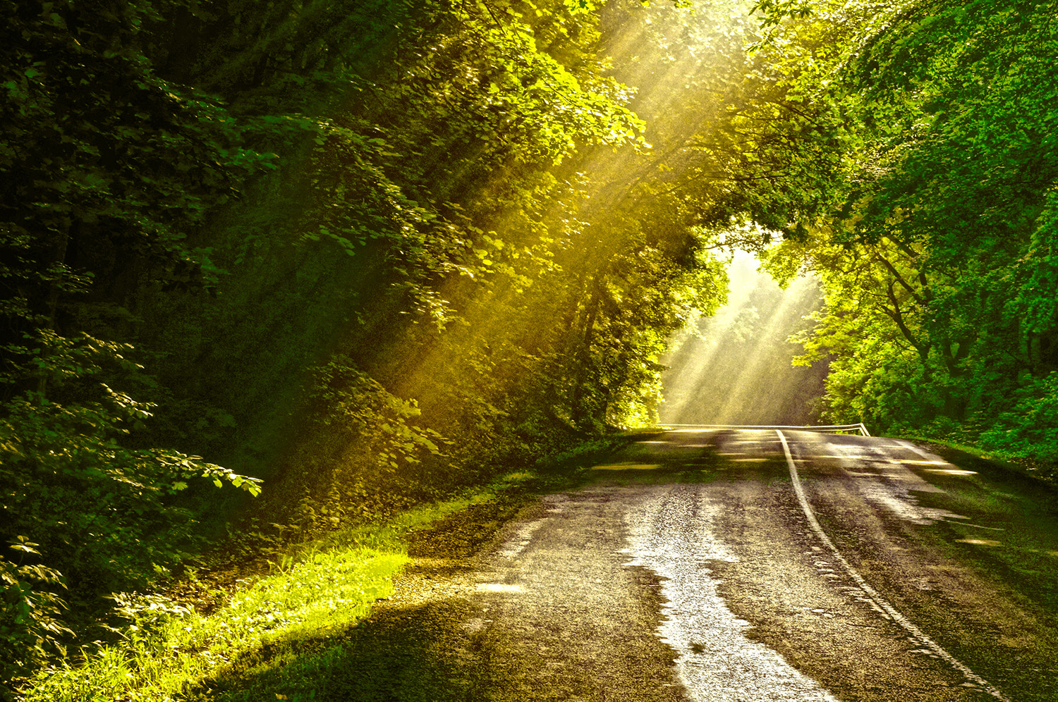 Photograph lights the road by Andy 58 on 500px