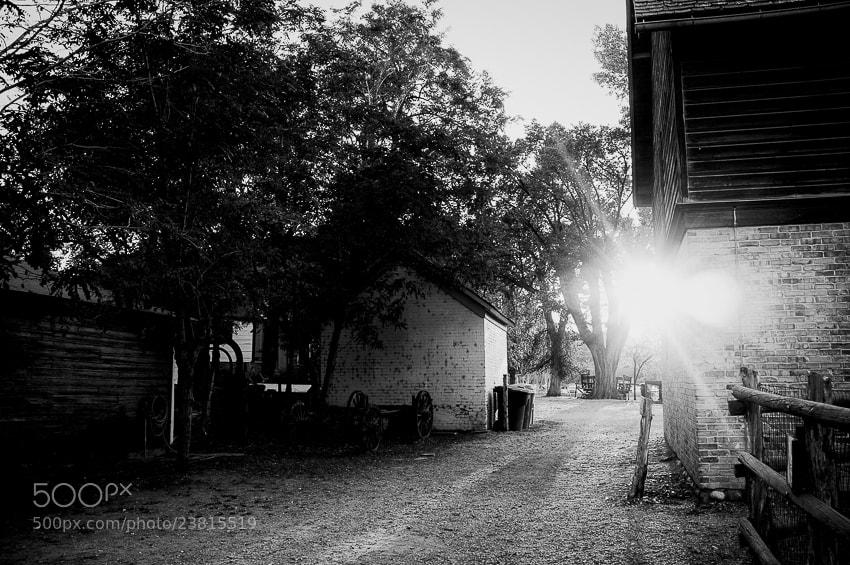 Photograph Last summer at Wheeler's Farm by Kaustubh Thapa on 500px