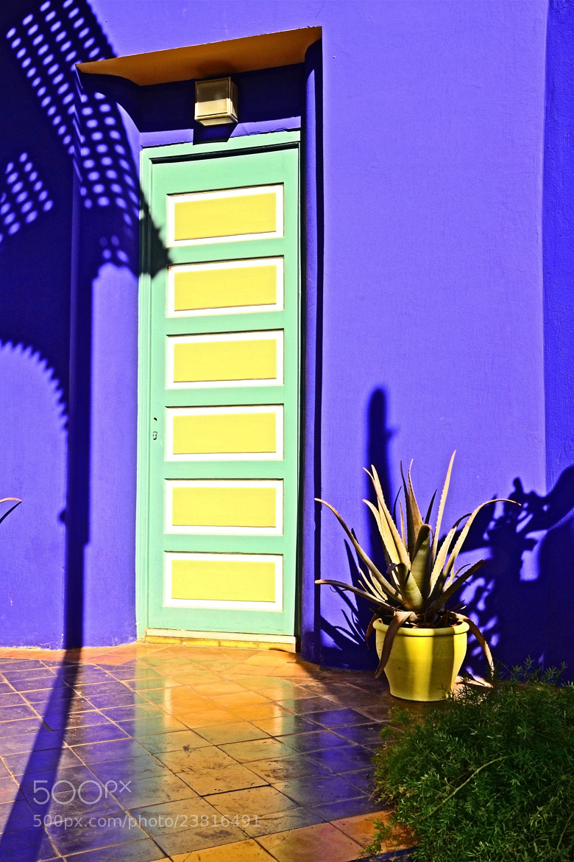 Photograph Colors by Zeynep Ugurdag on 500px
